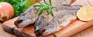 Fisch-Restaurant